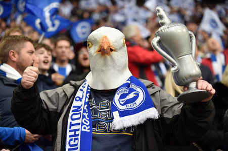 A Brighton & Hove Albion fan before the start of the FA Cup Semi Final match at Wembley Stadium, London. Picture date: 6th April 2019. Picture credit should read: Robin…